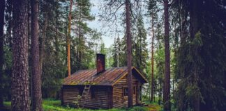 Domy z drewna całoroczne